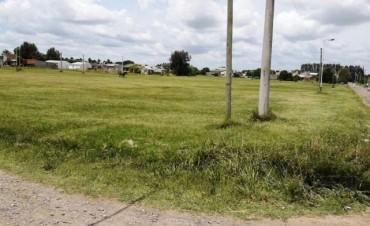 Nuevas tierras para Lezama