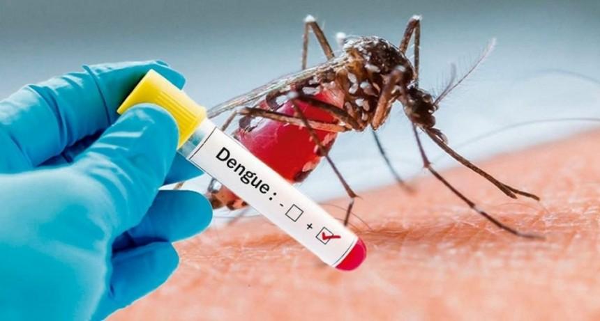 Ya son 73 los casos de Dengue en la Provincia