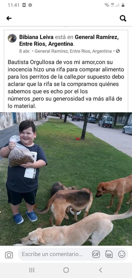 Tiene 5 años y alimenta a los perros de la calle