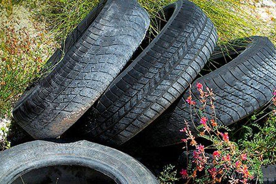 Se pone en marcha una campaña para evitar la acumulación de neumáticos en desuso